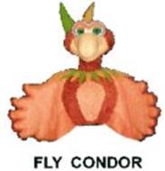 FLY CONDOR