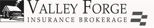 VALLEY FORGE INSURANCE BROKERAGE