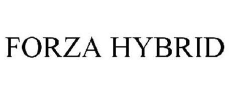 FORZA HYBRID