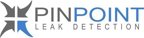 PINPOINT LEAK DETECTION