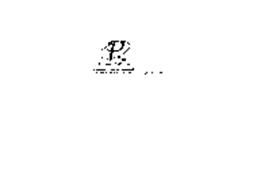 P2 PLATINUM 2000, INC. INFORMATION TECHNOLOGY COMPLIANTS COMMERCIAL BUSINESS SERVICES NOT FOR DISTRIBUTION