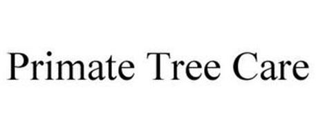 PRIMATE TREE CARE