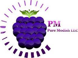 PM PURE MODISH LLC
