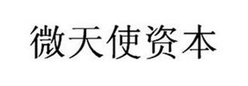 Qingdao Micro Angel Business Information Consulting & Management Enterprise