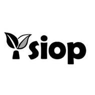 YSIOP