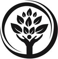 Quaker Voluntary Service, Incorporated