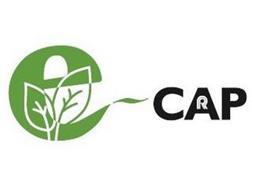 E-CAP R