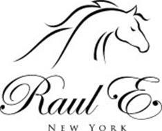 RAUL E NEW YORK