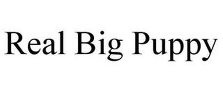 REAL BIG PUPPY