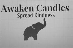 AWAKEN CANDLES SPREAD KINDNESS