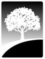 River Tree Capital Management, Inc.