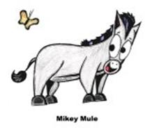 MIKEY MULE