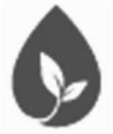 Rocky Mountain Oils, LLC