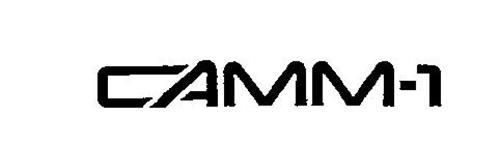 CAMM-1