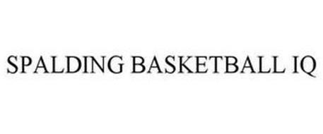 SPALDING BASKETBALL IQ