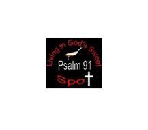 LIVING IN GOD'S SWEET PSALM 91 SPOT