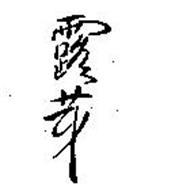 RYHODO SEIYAKU CO., LTD.