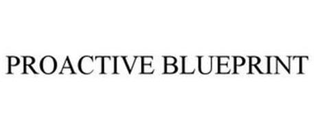 PROACTIVE BLUEPRINT