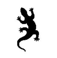 Salamander Studios Chicago, Inc.