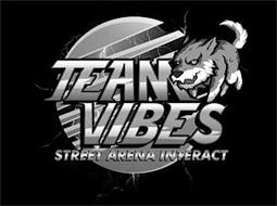 TEAM VIBES STREET ARENA INTERACT
