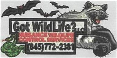 GOT WILDLIFE?LLC NUISANCE WILDLIFE CONTROL SERVICES (845)772-2381