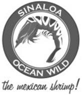 SINALOA OCEAN WILD THE MEXICAN SHRIMP!