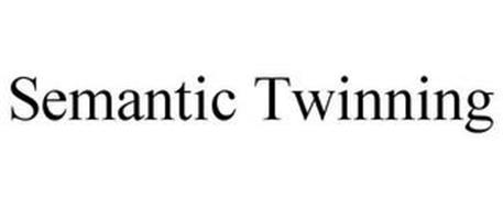 SEMANTIC TWINNING