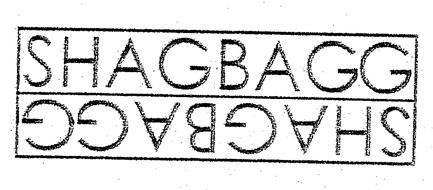 SHAGBAGG