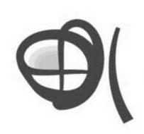 SHAO XING TENG YANG IMP. & EXP. CO., LTD.