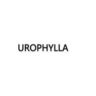 UROPHYLLA