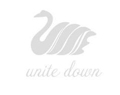 UNITE DOWN