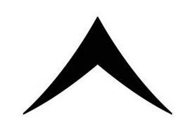 Skale Company