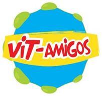 VIT-AMIGOS