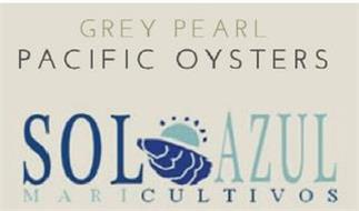 GREY PEARL PACIFIC OYSTERS SOL AZUL MARICULTIVOS