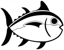 Southern Tide, LLC