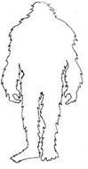 Southern Yeti Clothing Company LLC