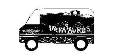 VANASAURUS