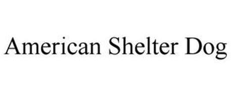 AMERICAN SHELTER DOG