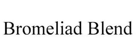 BROMELIAD BLEND