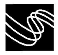 Surgient Networks, Inc.