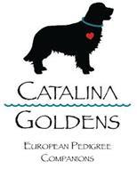 CATALINA GOLDENS EUROPEAN PEDIGREE COMPANIONS