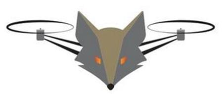 Swampfox Aerial, LLC