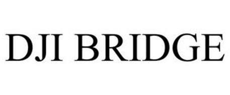 DJI BRIDGE