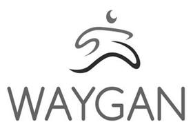 WAYGAN
