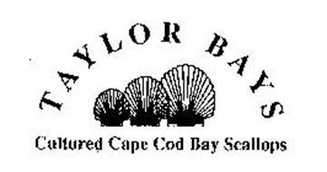 TAYLOR BAYS CULTURED CAPE COD BAY SCALLOPS