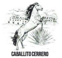 CABALLITO CERRERO