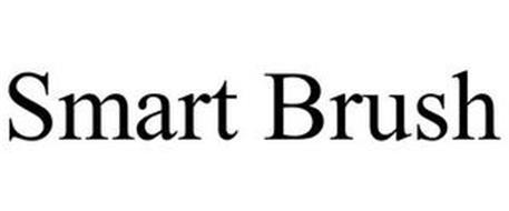 SMART BRUSH