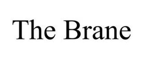 THE BRANE