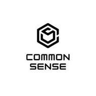 CS COMMON SNESE