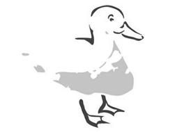 The Nantucket Duck Company LLC